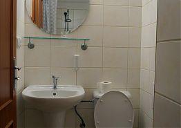 Toaleta a umyvadlo v koupelně.