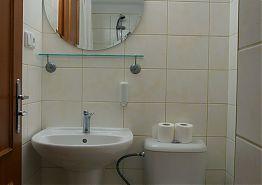 Koupelna s umyvadlem a toaletou.