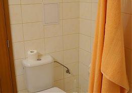V koupelně je k dispozici toaleta.