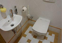 V přízemí apartmánu je k dispozic samostatná toaleta